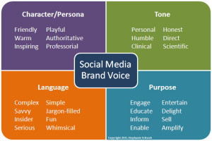 social media brand voice schema van stephanie schwab